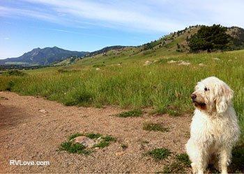 IMG_2516_Coda_Boulder_body