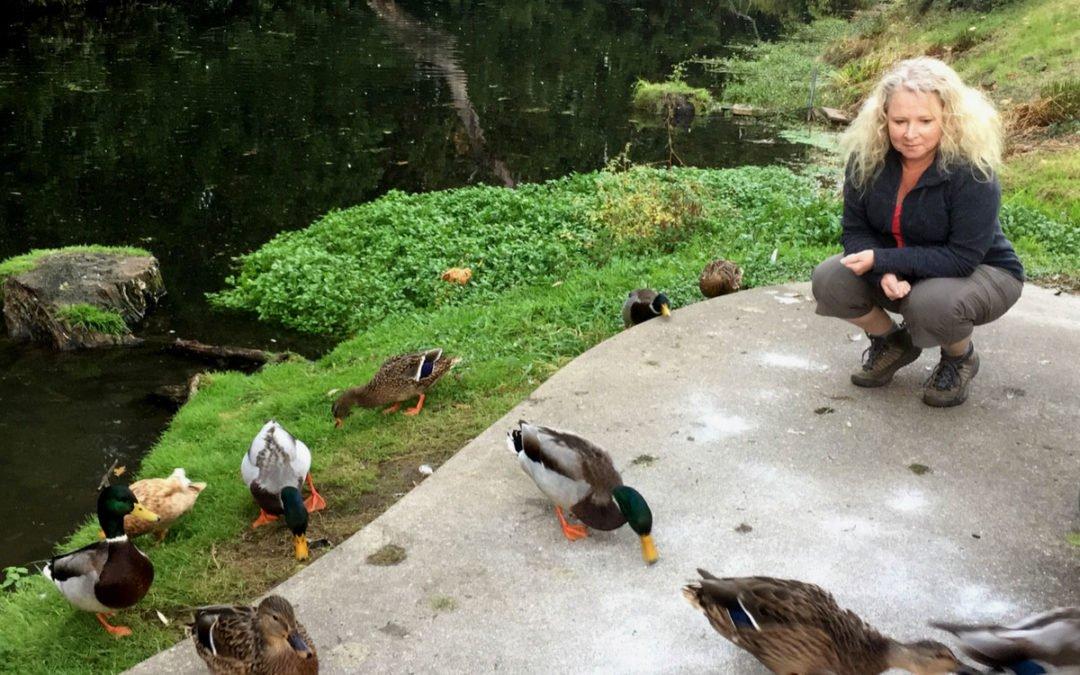 Review: Portland Fairview RV Park